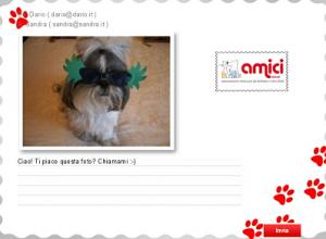 Cartolina virtuale con cane